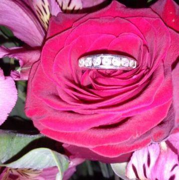 Tmx 1522053176 36e56e35475fd43b 1522053175 Ff7249c84ad2e6c0 1522053170674 1 1 Denver wedding planner