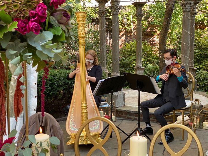 Violin and harp duo