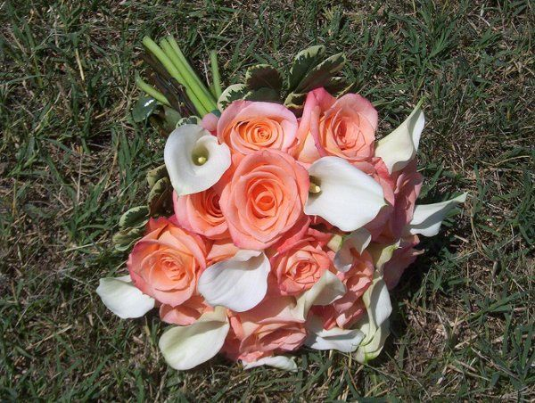 Tmx 1253060288550 Donnaroses2 Vineland, NJ wedding florist
