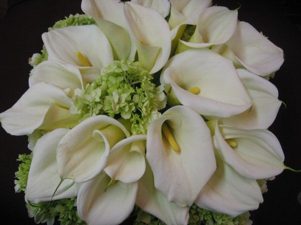 timeless calla lily bridal bouquet