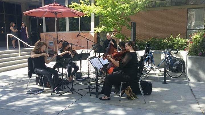 string love utah string quartet westminster co