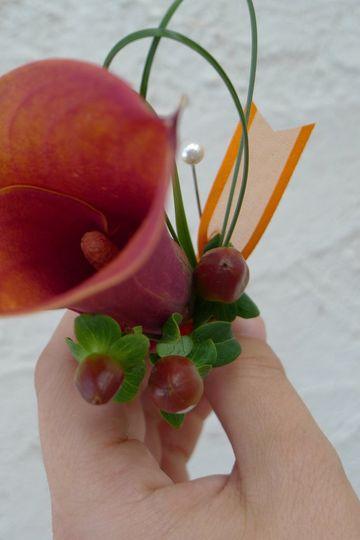orangemangocallaberrybout