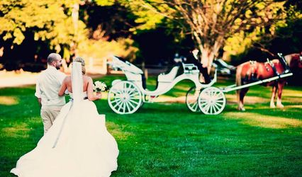 Once Upon a Time Horse and Carriage