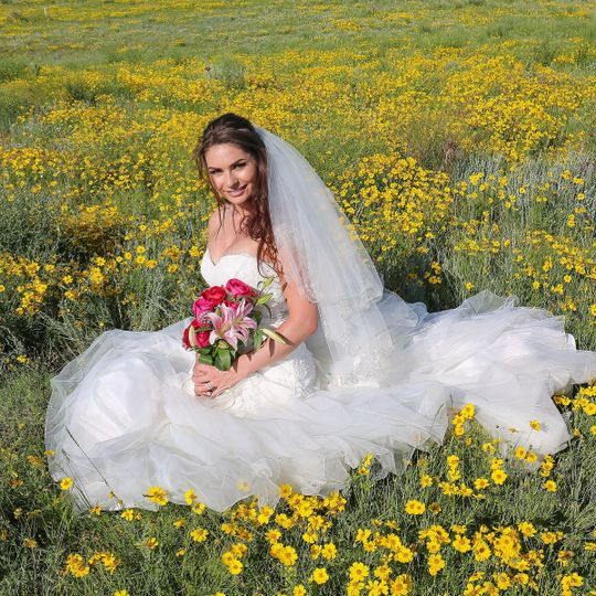 Rustic wedding Bride in field of sage