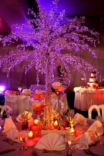 Crystal Tree's White Feathers Event Rental