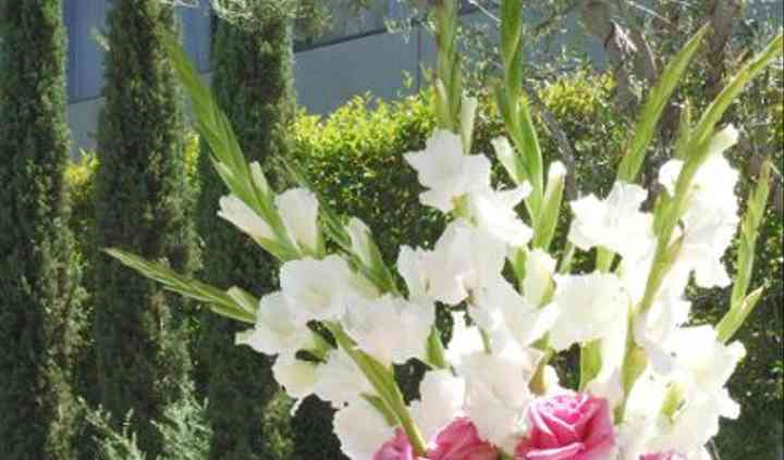 Extraordinary Events:  Flowers, Decor, & Party Rental