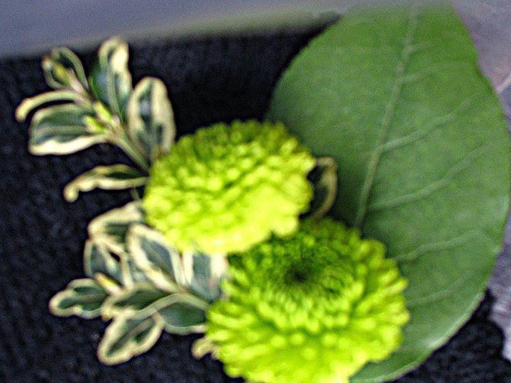 Tmx 1339534866669 Bouteneer Portland wedding florist