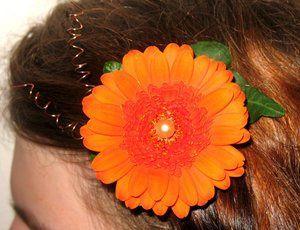 Tmx 1344394932986 Hairclip Portland wedding florist