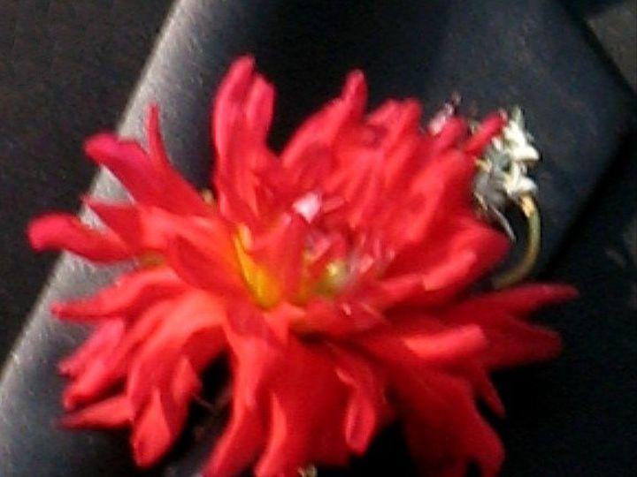 Tmx 1345770581019 Alexisgmbout Portland wedding florist