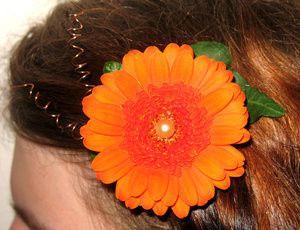 Tmx 1400751547807 Haircli Portland wedding florist