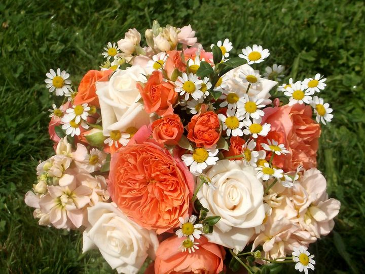Tmx 1400753220553 Peach B Portland wedding florist