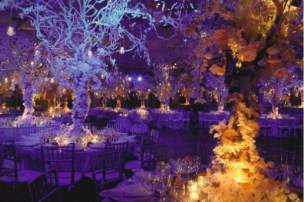 Tmx 1401510630783 Wedding10 Stone Mountain, GA wedding planner