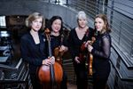 Melegari Chamber Players, LLC image