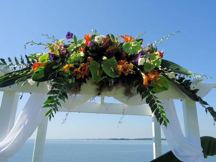 Tmx 1495117993856 Tropical Arbor R15c1 Royal Oak, MD wedding florist