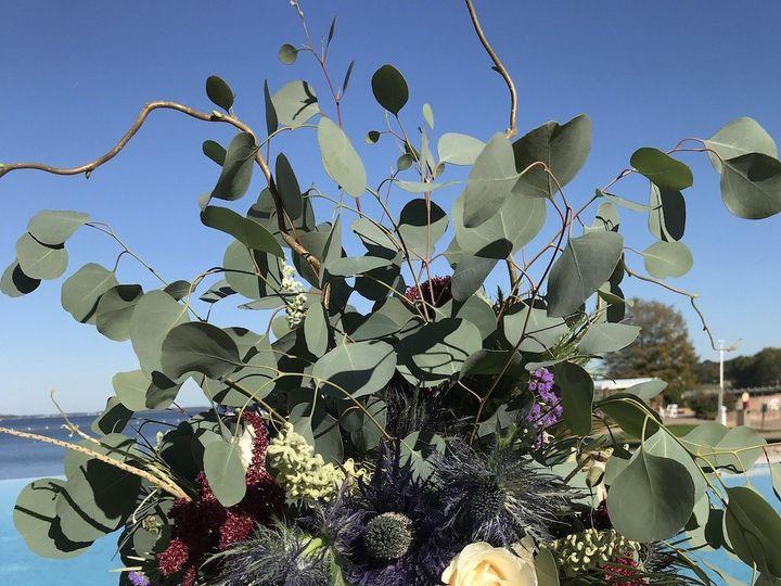 Tmx 1513033029320 Nbpumpkin Royal Oak, MD wedding florist