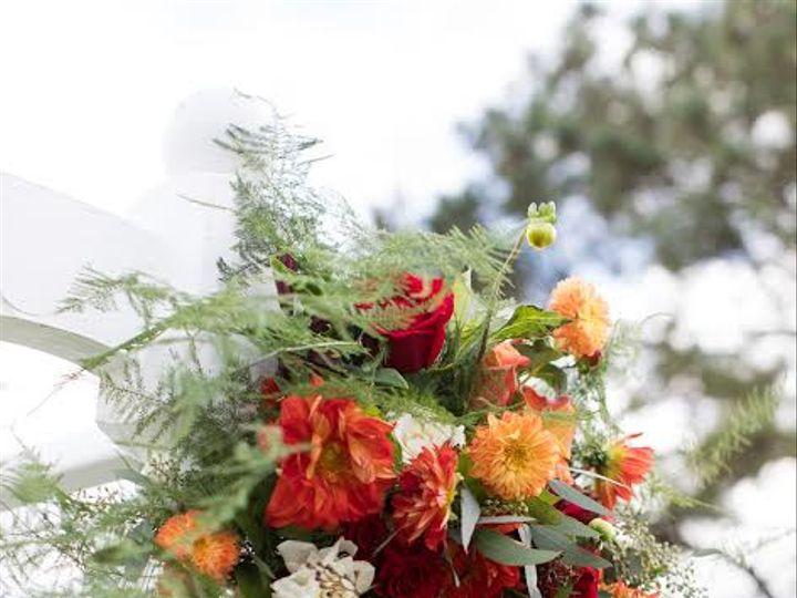 Tmx 3 51 975050 V1 Royal Oak, MD wedding florist
