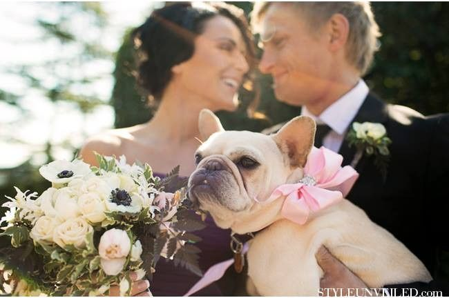 Tmx 1381114443381 3853356075705292550031886029602n Mill Creek wedding planner
