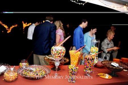 Tmx 1521994784 77f01465b4ec31f2 1521994783 0b12fdb77c09d38a 1521994771735 19 The Memory Journa Roseville wedding planner