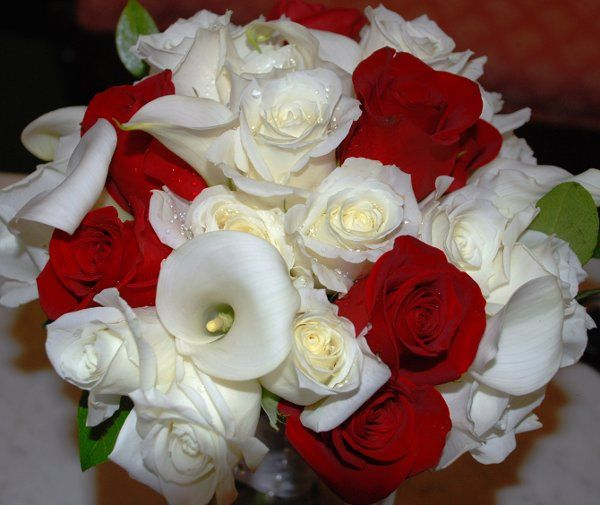 Tmx 1335905151426 DSC4245 Kissimmee, FL wedding florist