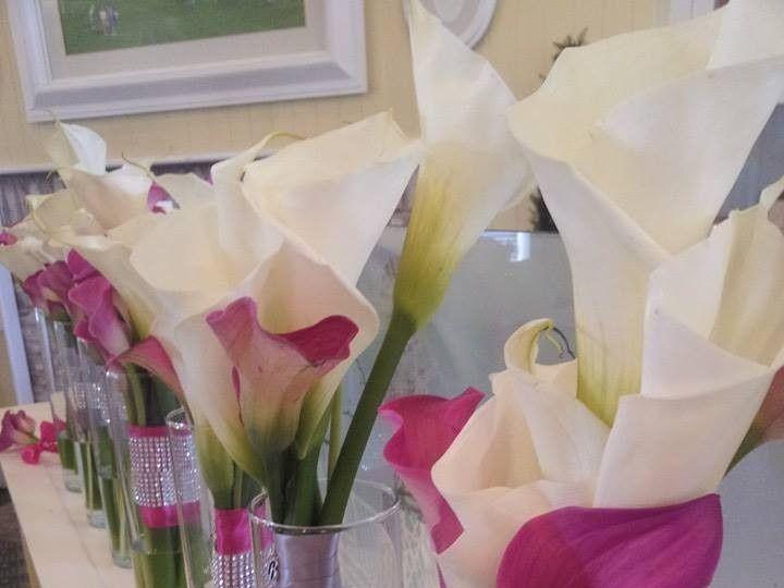 Tmx 1451406219116 107128367942999406120396577787627407325917n Kissimmee, FL wedding florist