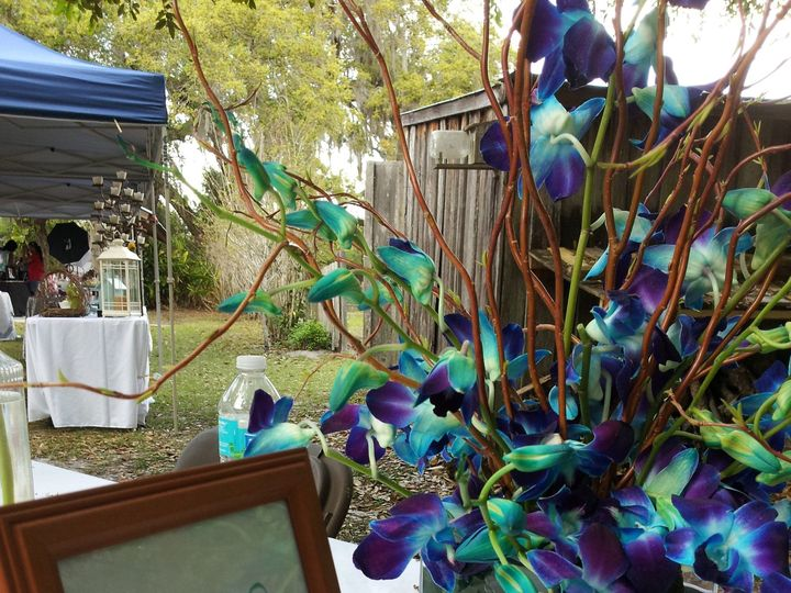 Tmx 1451589856181 20120310132854 Kissimmee, FL wedding florist
