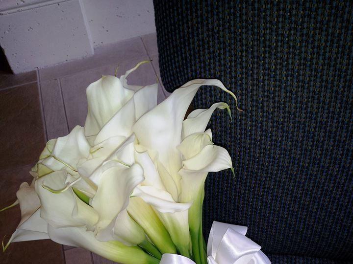 Tmx 1451590650069 101681087049196562167357528476403434748722n Kissimmee, FL wedding florist