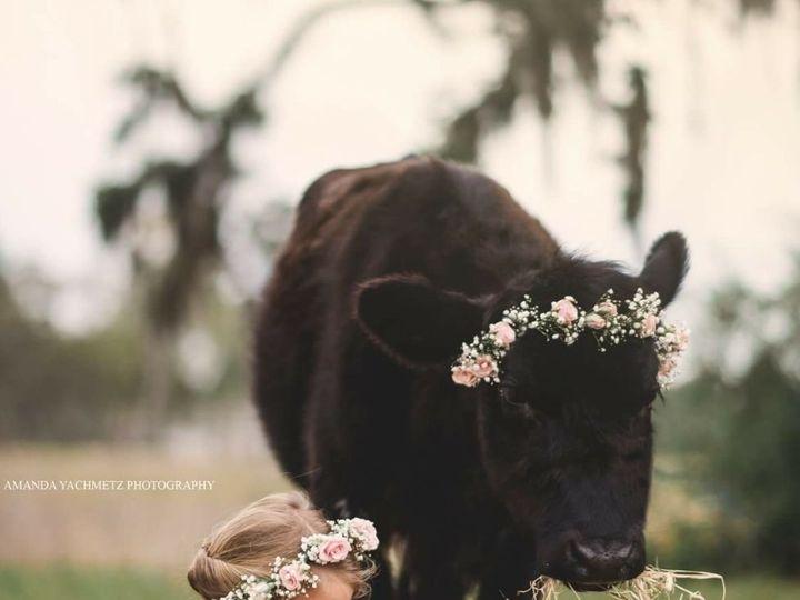 Tmx 1535384721 35e5164f1beda186 1535384720 57787ea0a161937d 1535384720997 5 Galaxy718 1788 Kissimmee, FL wedding florist