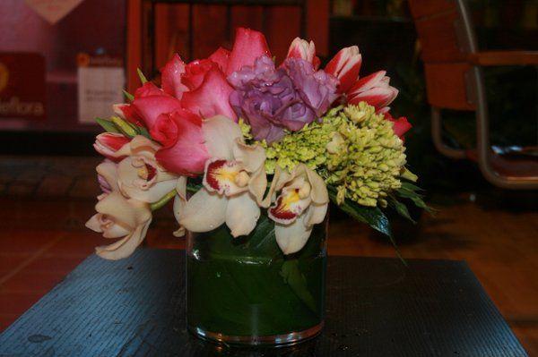 Tmx 1208369725575 Cymodium Washington, DC wedding florist