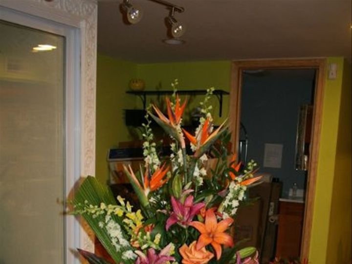 Tmx 1209824268413 Tropical Washington, DC wedding florist
