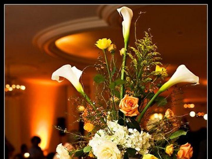 Tmx 1222355552637 TraceyLongCenterpiece Washington, DC wedding florist