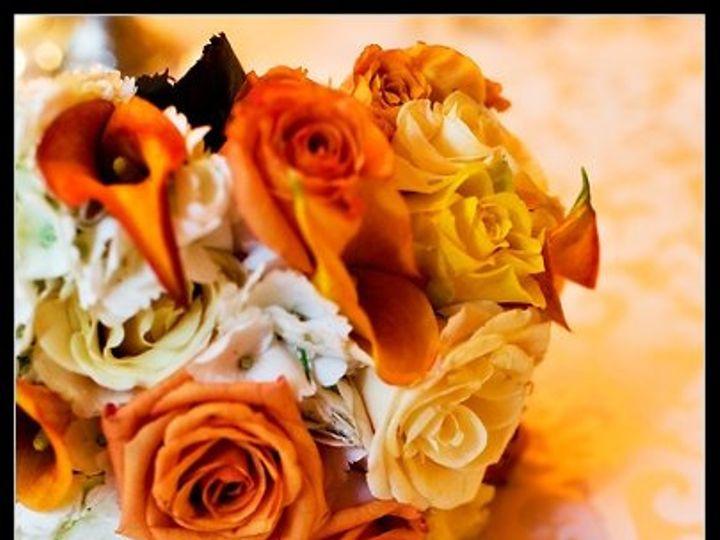 Tmx 1222358025628 TraceyBM Washington, DC wedding florist