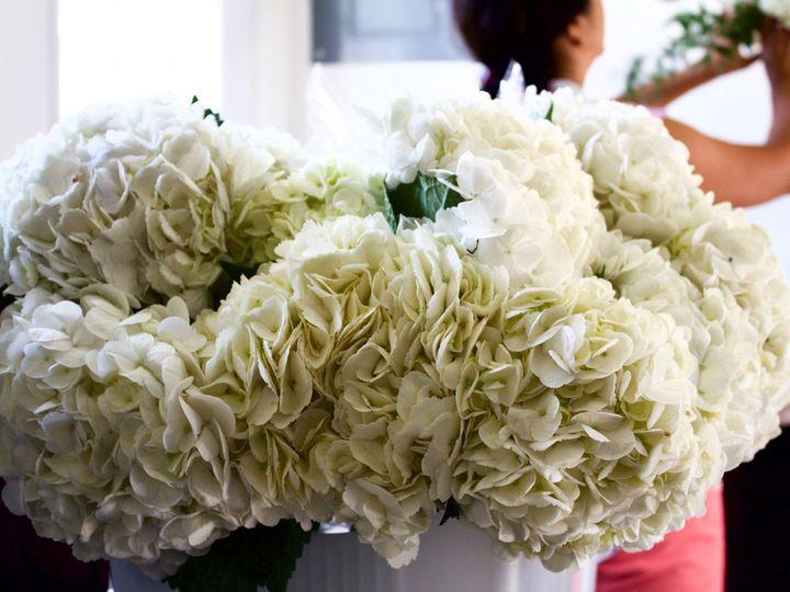 Tmx 1472505981334 Img0505 Frisco, Texas wedding florist