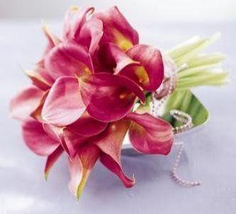 Tmx 1255711553113 MiniCallaBouquet Pearl River, New York wedding florist
