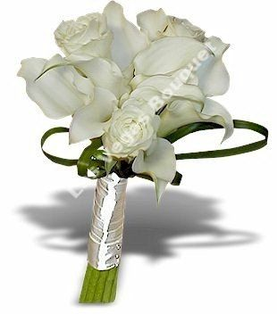 Calla and Roses WE-006-002