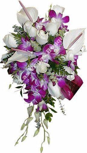 White Anthuriums Cascade WE-006-008