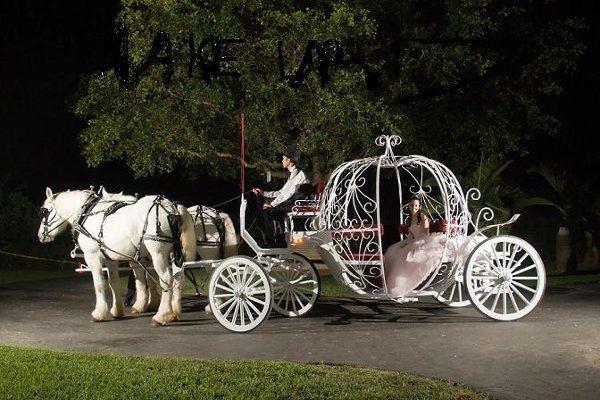 Tmx 1289253531386 Cinderellascarriage01 Miami wedding transportation