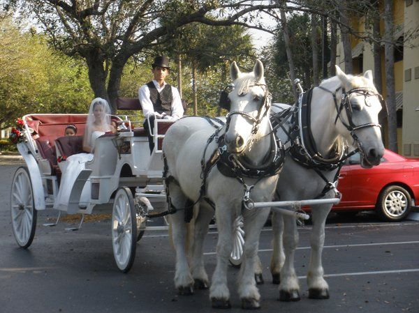 Tmx 1289254730869 P2140453 Miami wedding transportation