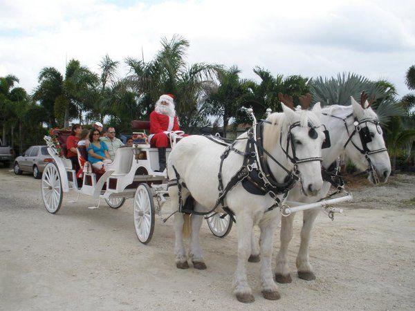 Tmx 1294936771265 Christmasridespictures015 Miami wedding transportation