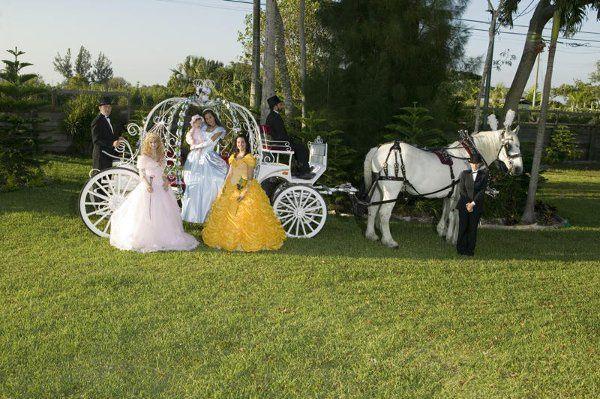 Tmx 1294936772515 Cinderellascarriage020 Miami wedding transportation