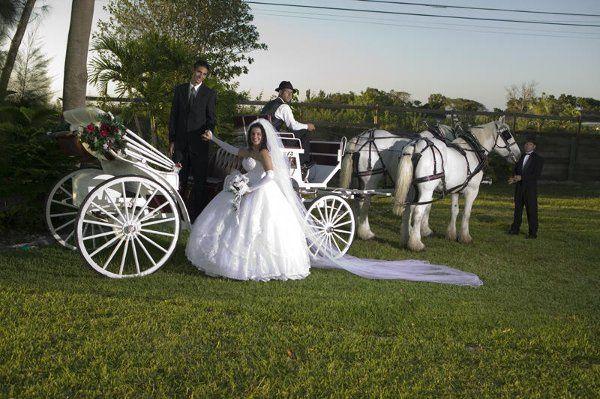 Tmx 1294936775031 Cinderellascarriage042 Miami wedding transportation