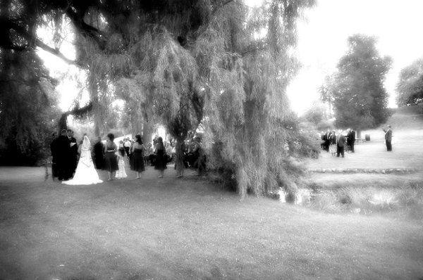 weddingwirebeephoto1