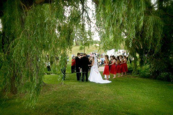 weddingwirebeephoto2