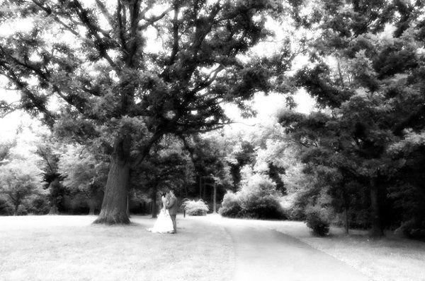 weddingwirebeephoto20