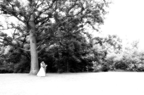 weddingwirebeephoto22