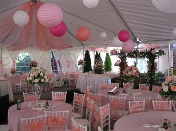 A grand event party rentals event rentals north bethesda md 800x800 1298656967966 lamwedding02 junglespirit Images
