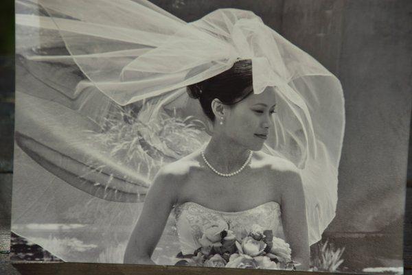 Tmx 1266120202509 DSC0057 Carmel, CA wedding photography