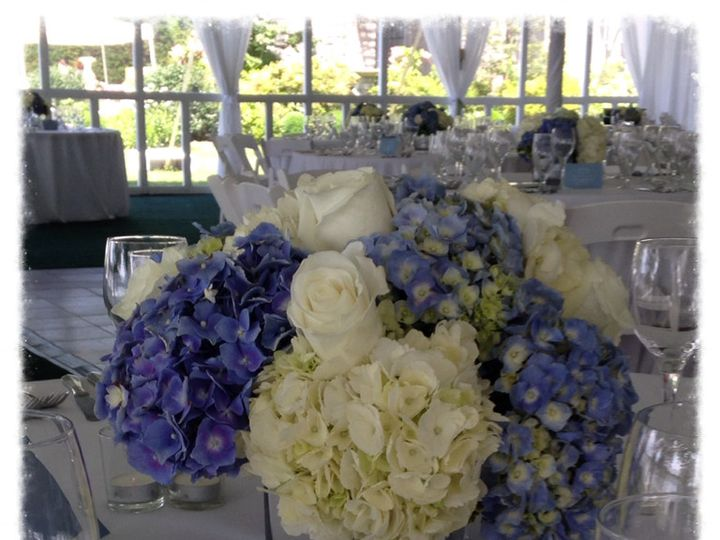 Tmx 1405427760027 Blue  White In Mirrored Cube Harrison, NY wedding florist