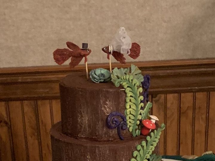 Tmx 51456eed 66a5 426b 94d0 9bdeb7b01d5e 51 968450 Arroyo Grande, CA wedding cake