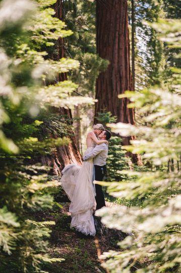 Kiss among the Sequoias