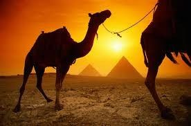 Want an exotic honeymoon? How about Egypt?